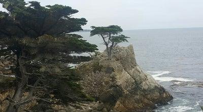 Photo of Beach Monterey Beach at Pacific Grove, CA 93950, United States