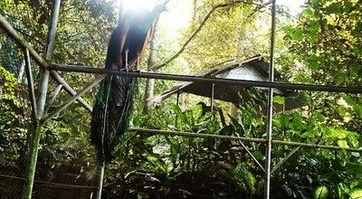 Photo of Park Taman Botani Sukorambi at Sukorambi, Jember, Kaliwates, Indonesia