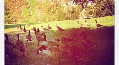 Photo of Park Rancho Simi Community Park at 1765 Royal Ave, Simi Valley, CA 93065, United States