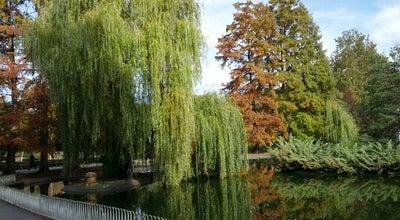 Photo of Park Dunavski park at Dunavska, Novi Sad 21000, Serbia