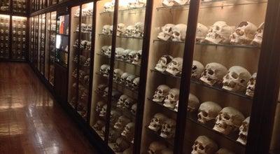 Photo of History Museum Museo Canario at C/ Dr. Verneau 2, Las Palmas de Gran Canaria 35001, Spain
