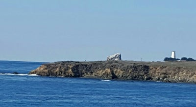 Photo of Lighthouse Piedras Blancas Light Station at 15950 Highway 1, North Coast, CA 93452, United States
