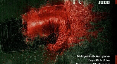 Photo of Martial Arts Dojo Topuz Fight Academy at Şerif Ali Yolu Caddesi No.88 Küçükbakkalköy, İstanbul, Turkey