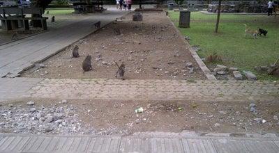 Photo of Park Obyek Wisata Alas Kedaton at Indonesia