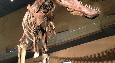 Photo of Science Museum 北九州市立 いのちのたび博物館 at 八幡東区東田2-4-1, Kitakyūshū 805-0071, Japan