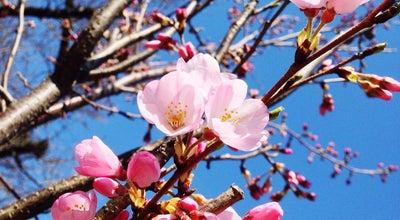 Photo of Park 桜並木西公園 at 箕面5-4-10, Minoo, Japan