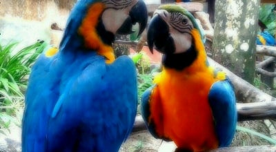 Photo of Park Langkawi Bird Paradise & Wildlife Park at Langkawi 07000, Malaysia