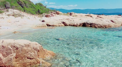 Photo of Beach Barbicaja at Ajaccio, France