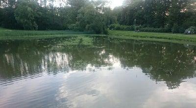 Photo of Lake Pustkovecký rybník at Pustkovecká, Ostrava 708 00, Czech Republic