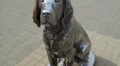 Photo of Outdoor Sculpture Белый Бим Чёрное Ухо at Просп. Революции, Воронеж 394036, Russia
