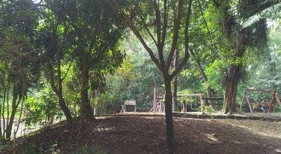 Photo of Park Parque Municipal Chico Mendes at Av. Praia Grande, Osasco, Brazil
