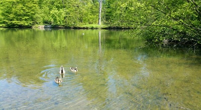 Photo of Lake Chotkův rybník at Kroměříž 767 01, Czech Republic
