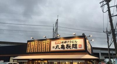 Photo of Japanese Restaurant 丸亀製麺 朝霞店 at 三原5-2-4, 朝霞市, Japan