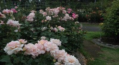 Photo of Botanical Garden フラワーセンター 大船植物園 at 岡本1018, 鎌倉市 247-0072, Japan