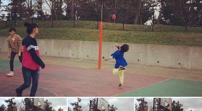 Photo of Park 弓ヶ浜公園 (Yumigahama  Park) at 両三柳3192-2, 米子市 683-0853, Japan
