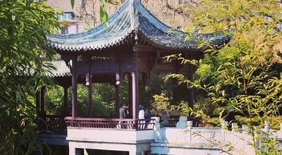 Photo of Park Chinesischer Garten at Friedberger Anlage, Frankfurt am Main 60311, Germany