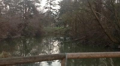 Photo of Park Parco della Repubblica at Via Cividale, Modena 41125, Italy