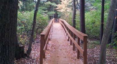 Photo of Trail Salem Forest at Salem, NH 03079, United States