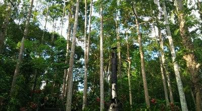 Photo of Historic Site Sandakan Memorial Park at Jalan Lintas Selatan, Sandakan, 90000, Malaysia