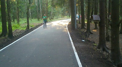 Photo of Trail Дорожка в лесу at Russia