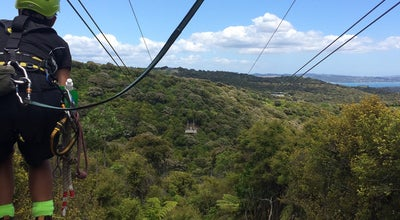 Photo of Theme Park EcoZip at New Zealand