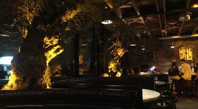 Photo of Italian Restaurant Sophie's at 33 Harcourt Street, Dublin, Ireland