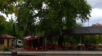 Photo of Park Pomakköy Havuz Başı at Turgutalp, Manisa 45500, Turkey