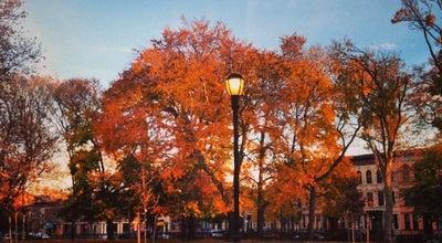 Photo of Park Saratoga Park at Halsey St, Brooklyn, NY 11233, United States