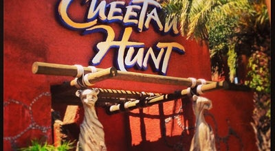 Photo of Theme Park Ride / Attraction Cheetah Hunt at 3600 E Busch Bl, Tampa, FL 33612, United States