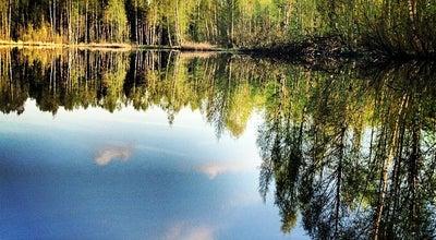 Photo of Park Парк «Сосновка» at Светлановский Просп., Санкт-Петербург, Russia