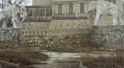 Photo of Monument / Landmark Дача К.П. Головкина (Дом со слонами) at Ул. Советской Армии, 292, Самара 443029, Russia