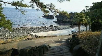 Photo of Beach 伊豆海洋公園 at 富戸841-1, 伊東市, Japan