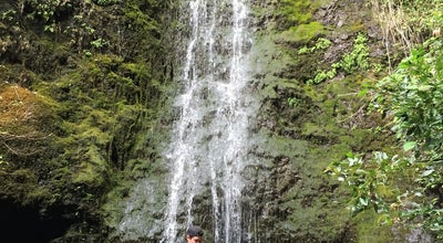 Photo of Trail Lulumahu Falls at Honolulu, HI, United States