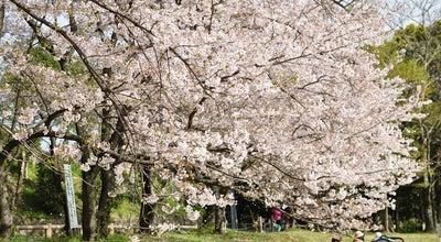 Photo of Historic Site 大宰府政庁跡 (都府楼跡) at 観世音寺4-6-1, 太宰府市 818-0101, Japan
