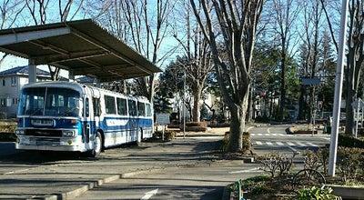 Photo of Park さくら交通公園 at Azuma 4-3-3, Tsukuba, Japan