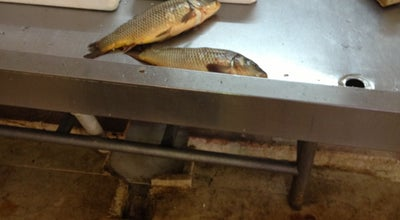Photo of Fish Market Balik Hali at Turkey