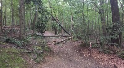 Photo of Trail Wissahickon Creek Trail at Philadelphia, PA 19128, United States
