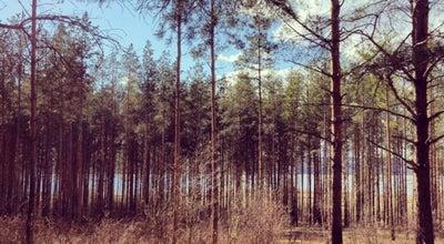Photo of Park Прибрежный at Прибрежная Ул., Набережные Челны, Russia