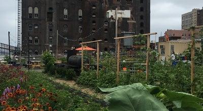 Photo of Farm North Brooklyn Farms at 329 Kent Avenue, Brooklyn, NY 11222, United States