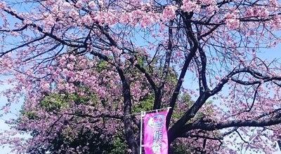 Photo of Park 熊谷さくら運動公園 at 小島157-1, 熊谷市, Japan