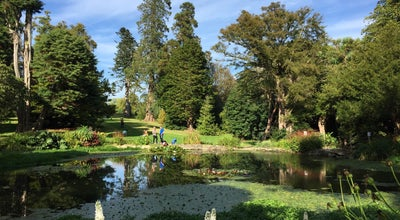 Photo of Park Kilmacurragh Arboretum at Ireland