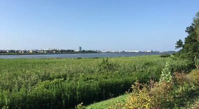 Photo of Lake 鳥屋野潟 at 中央区桜木町, 新潟市, Japan