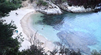 Photo of Beach Cala el Pi at Avinguda Del Cavall Bernat, 60, Castell-Platja d'Aro 17250, Spain