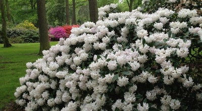 Photo of Park Rhododendronpark at Deliusweg 40, Bremen 28359, Germany