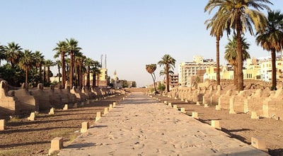 Photo of Historic Site Avenue of the Sphinxes | طريق الكباش at Stretches 2.5 Km From Karnak Temple To Temple Of Mut And Temple Of Luxor, Luxor, Egypt