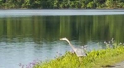 Photo of Lake Ashley Reservoir at Ashley Reservoir, Holyoke, MA 01040, United States