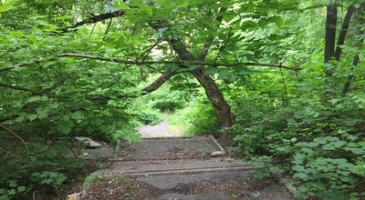 Photo of Trail Заброшеный Парк at Ukraine