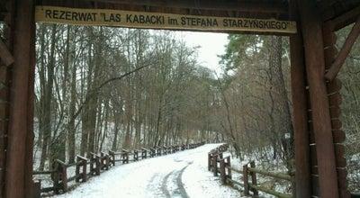 Photo of Park Park Kultury w Powsinie at Maślaków 1, Warszawa 02-973, Poland