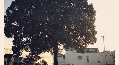 Photo of Park 吉祥寺西公園 at 吉祥寺本町3-7, 武蔵野市, Japan