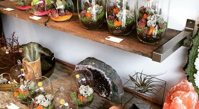 Photo of Furniture / Home Store Alapash Terrariums at 1944 W Montrose Ave, Chicago, IL 60640, United States
